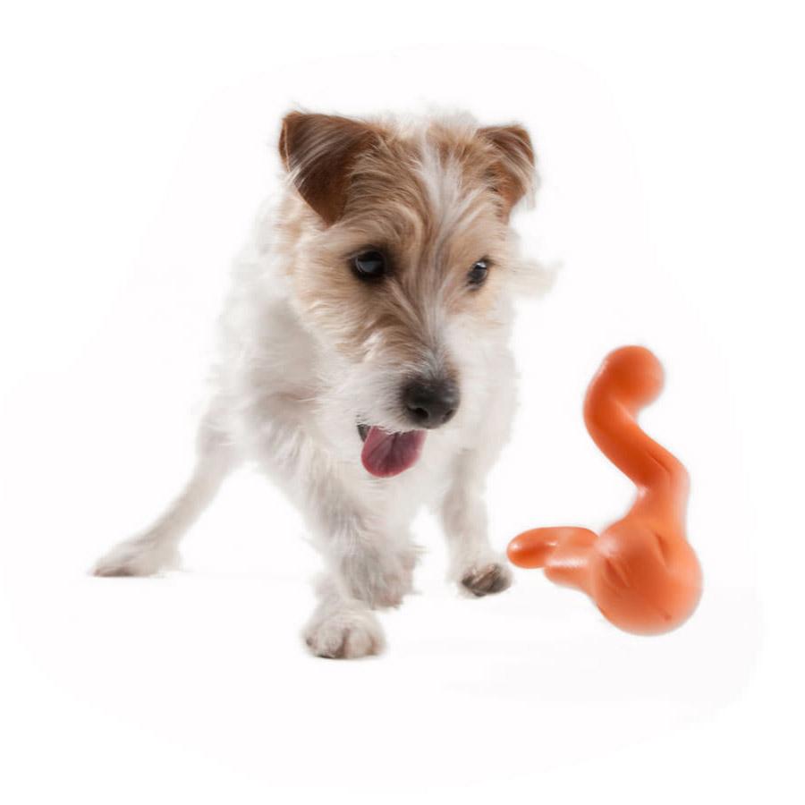 Tizzi West Paw Hundespielzeug