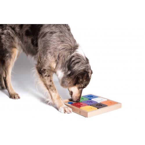 Dog' SUDOKU® Rainbow Expert